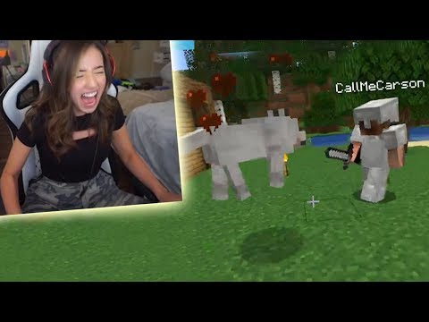 I killed Pokimane's dogs in Minecraft...