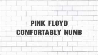 Pink Floyd - ''Comfortably Numb'' 2011 - Remaster - (5.1) - [SACD] - (2012)