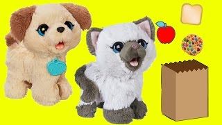 Pax My Poopin' Pup and Kami Kitty Furreal Friends Pack lunches