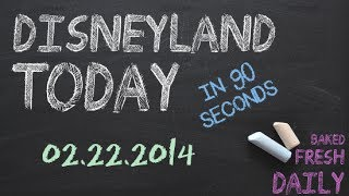 Repeat youtube video Today at Disneyland in 90 seconds | 02-22-2014