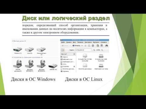 Информатика || Файлы и файловая система