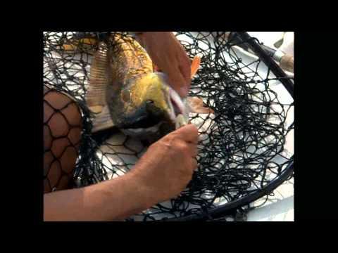 2005 Oh Boy Oberto Redfish Cup Event 2 Chalmette Louisiana