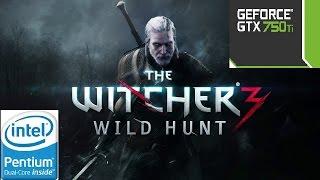 The Witcher 3: Wild Hunt - GTX750 ti - Dual Core - 8GB Ram