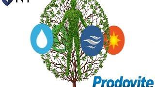 Why do you need Prodovite Liquid Multivitamin Supplement?