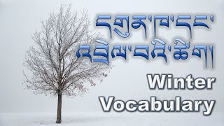དགུན་ཁ་དང་འབྲེལ་བའི་ཚིག། (dgun Kha Dang 'brel Ba'i Tshig): 35 Winter Words In Tibetan