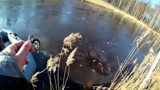 Ловля щуки на озере с рабочими вертушками ловлящуки блесна щука