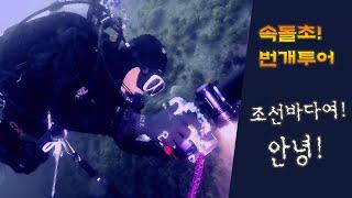 [스쿠버다이빙,scubadiving][코브라다이브,cobradive] 7월 속돌초 번개투어     조선다이빙 계속 해? 말아??