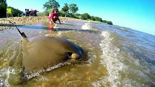 I CAUGHT A BIG COWNOSE RAY 🤗 , SURF FISHING