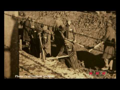 Auschwitz Birkenau German Nazi Concentration and Extermination Camp (1940-1945) (UNESCO/NHK)
