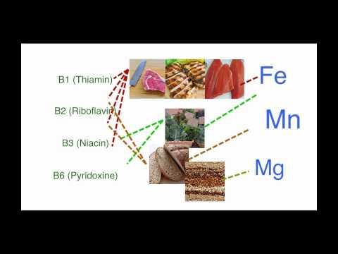 Energy Pathways 08 - Vitamins & Minerals