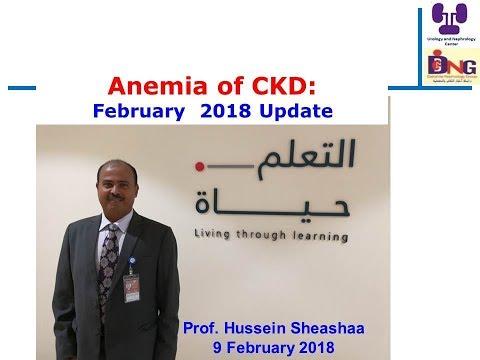 Anemia of CKD, February  2018 Update, Prof  Hussein sheashaa