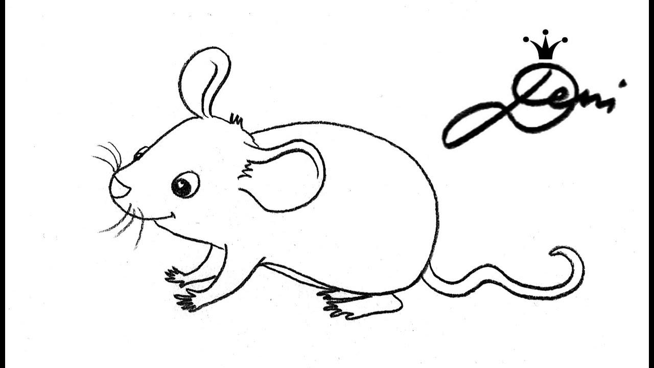 maus schnell zeichnen lernen f r kinder how to draw a mouse for kids. Black Bedroom Furniture Sets. Home Design Ideas