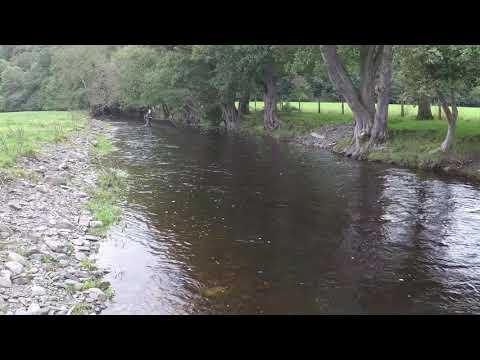 Rhyl & St Asaph Anglers Llansannan Beat RiverAled