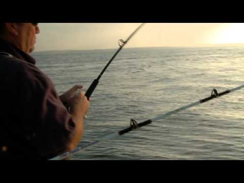 Leaving A Chunk Of Your Bait Down Might Catch Big Fish