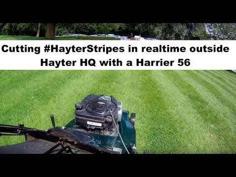 Real time mowing - Hayter Head Office lawn cut with a Harrier 56 - #HayterStripes