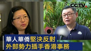华人华侨坚决反对外部势力插手香港事务   CCTV
