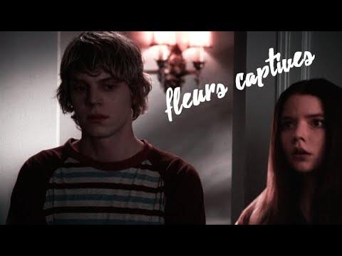 Fleurs Captives » Tate & Casey