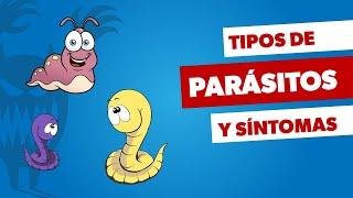Síntomas de parásitos intestinales