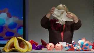 Crocheting Hyperbolic Planes: Daina Taimiņa at TEDxRiga