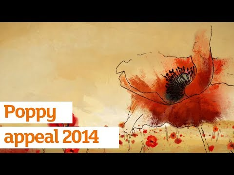 Poppy Appeal Advert - Sainsbury's and The Royal British Legion