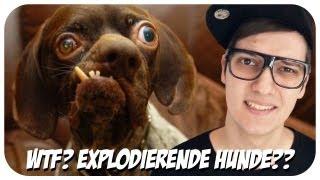 Hunde, die nach 7 Wochen Explodieren? Liliputaner jagen um Flatscreen zu gewinnen? WTF?