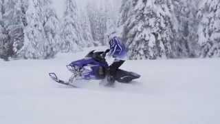 Yamaha Viper RTX