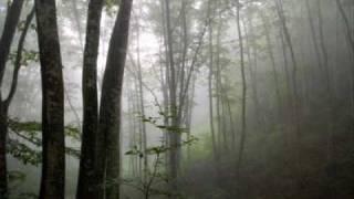 森の小人/童謡・唱歌/coverまさ/AMIさん演奏