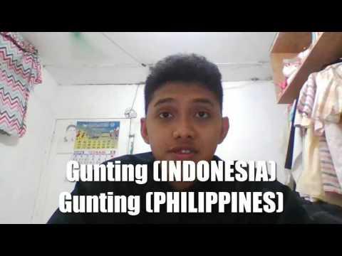 Vocabulary Similarities between Bahasa Indonesia and Filipino