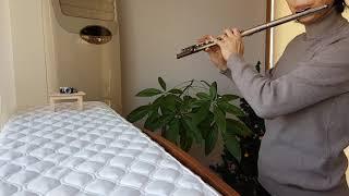 플룻초보자의 [가톨릭성가] 전곡 연주 도전기-{189.…