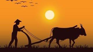 Farmer Status   tribute to farmer #short #shorts #ytshorts #savefarmer