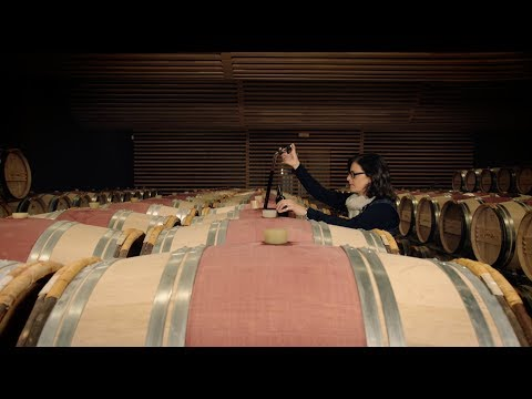 Wine Masters Trailer Season 1: France
