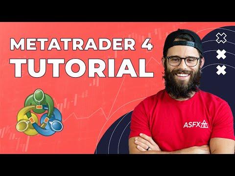 MetaTrader4 Tutorial For Beginners | Austin Silver