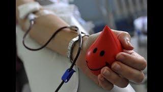 донор крови, прогул за свой счет