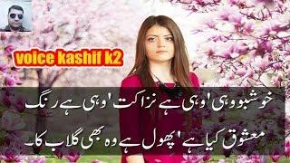 Voice Kash...