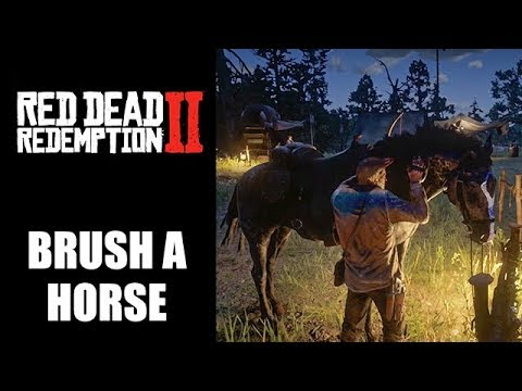 Red Dead Redemption 2 how to brush horse