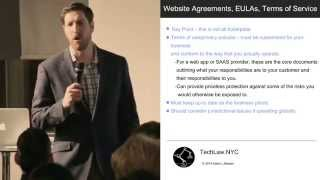 Website Agreements, License Agreements and Terms of Service