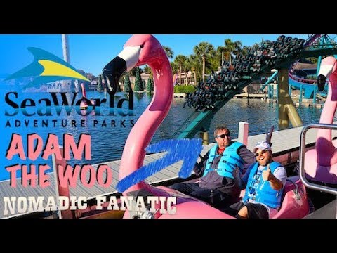seaworld-collab-with-adam-the-woo