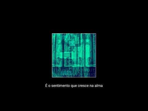 Extrato - Flow Zapata