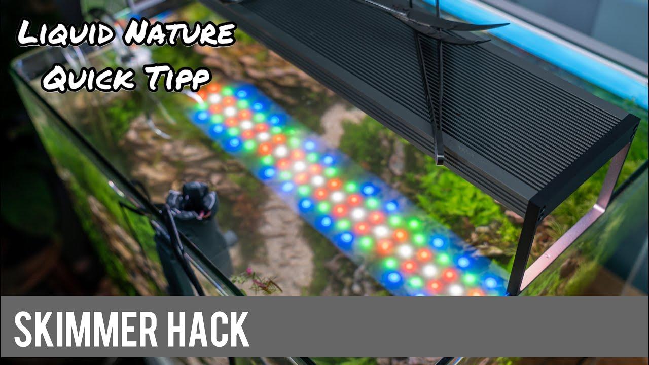 Skimmer Hack nach Rückschnitt | Liquid Nature Quick Tipp