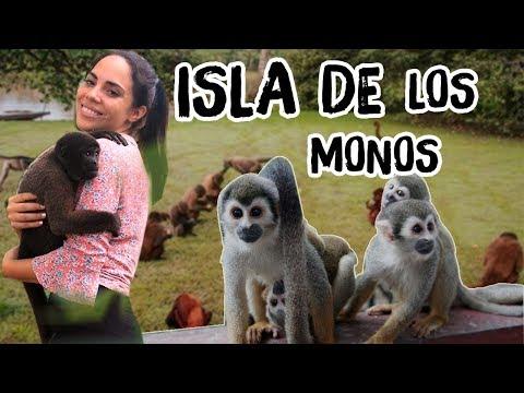 AQUÍ HAY UNA ISLA DE MONOS SECRETA - PERÚ | Katy The Chic