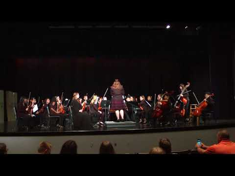 Mulberry Middle School Sinfonia Orchestra