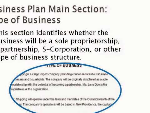 Actual Business Plan Example  - Part 1