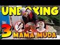 Unboxing Indukan Super Red Iguana Langsung  Ekor  Mp3 - Mp4 Download