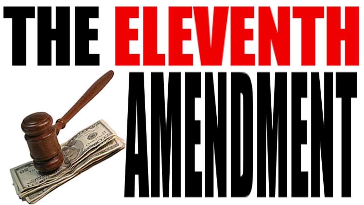 The Eleventh Amendment Explained In 3 Minutes The Cons Ution For Dummies Series You