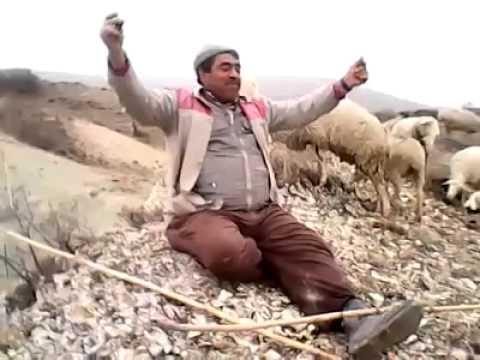 Çoban Türküsü amatör