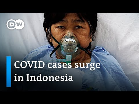 Red Cross warns Indonesia 'on the edge of a COVID-19 catastrophe' | DW News