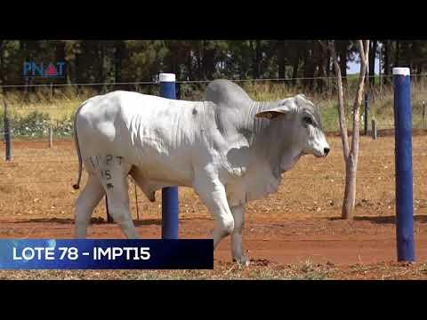 LOTE 78 - IMPT 15 - TABAPUÃ