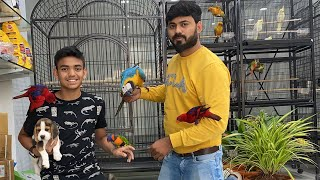 Exotic Dogs and Birds For Sale At Danny Kennels And Exotic Pets , Hyderabad (Banjara Hills)