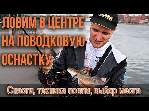 Ловим окуня, судака и щуку на Неве в центре Санкт-Петербурга поводковой оснасткой. !