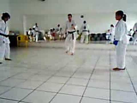 Fotos de treinos de karate 60